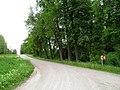 Kelias - panoramio (3).jpg