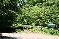 Kentisbeare, Forestry Commission, Blackborough - geograph.org.uk - 179206.jpg
