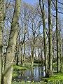 Keukenhof - panoramio (152).jpg