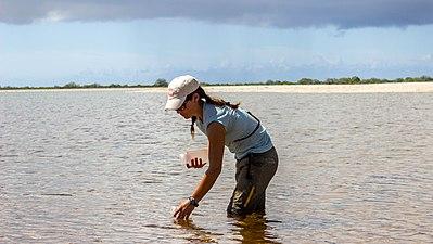 Kiritimati watersampling.jpg