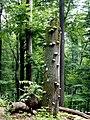 Kirschweiler, Naturschutzgebiet Silberich – Kirschweiler Festung - panoramio (11).jpg