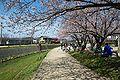Kisegawa7166j.jpg