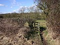 Kissing gate on footpath to Bushes Farm, Snitterfield - geograph.org.uk - 1730684.jpg