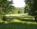 Klein-Glienicke Großer Wiesengrund Drive.jpg