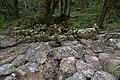 Kolpa River 1183.jpg