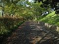 Kounoike Sports Park - panoramio (2).jpg