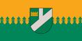 LVA Pļaviņas flag.png