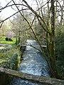 La rivière Boutonne à Dampierre-sur-Boutonne.JPG
