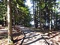 Lake McDonald, 10 Mile Pullout (Jackson Bay) - 2 (7644812264).jpg
