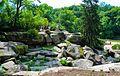 Landscape111111.jpg