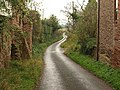 Lane at Adsborough - geograph.org.uk - 1586529.jpg