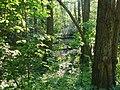 Langenfeld Schwanenmühle 0030.jpg
