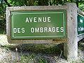 Le Touquet-Paris-Plage (Avenue des Ombrages).JPG