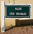 Le Touquet-Paris-Plage 2019 - Allée des Erables (Whitley).jpg