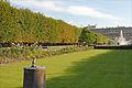 Le petit canon du Palais Royal (3664648347).jpg