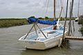 Le sloop ostréicole et de pêche L'Aiglon (6).JPG