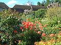 Leeds Castle - Mohnblumen im Garten.jpg
