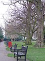 Leigh Library Gardens - geograph.org.uk - 328802.jpg