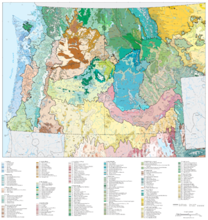 Blue Mountains (ecoregion) - Image: Level IV ecoregions, Pacific Northwest