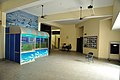Life Science Gallery - Bardhaman Science Centre - Bardhaman 2015-07-24 1306.JPG