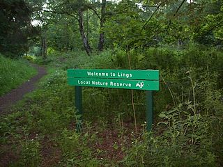 Lings Wood Nature Reserve nature reserve in the United Kingdom