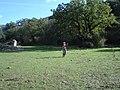 LlanosRavel.jpg