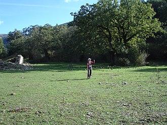 Sierra de Grazalema Natural Park - Image: Llanos Ravel