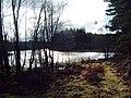 Loch Bran - geograph.org.uk - 797685.jpg