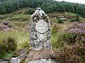 Loch Grannoch Monument - geograph.org.uk - 681013.jpg