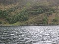 Loch Nevis Coast - geograph.org.uk - 794017.jpg