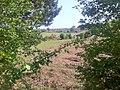 Longslade Bottom - panoramio.jpg