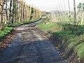 Looking N along Pedding Lane - geograph.org.uk - 628904.jpg