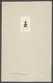 Loricera - Print - Iconographia Zoologica - Special Collections University of Amsterdam - UBAINV0274 001 01 0052.tif