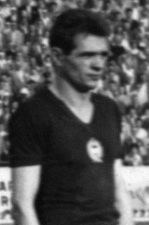Sándor Mátrai Hungarian footballer