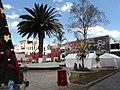 MI ARBOL Y YO - panoramio.jpg
