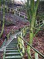 MOs810, WG 2015 54 Okonecczyzna (Ujscie, stairs to observation tower) (2).JPG