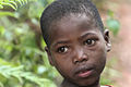 Madagascar (8528241694).jpg
