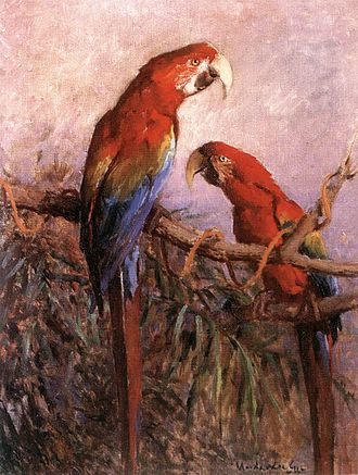Gyula Madarász - A painting of macaws by Madarász