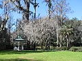 Magnolia Plantation and Gardens - Charleston, South Carolina (8555510167).jpg