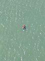 Man Overboard! (31594964610).jpg
