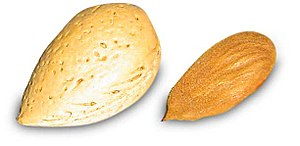 Shelled (right) and unshelled (left) almonds