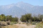 Manzanar September 2016 004.jpg