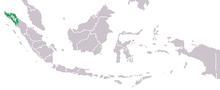 Mapa distribuicao pongo abelii.png