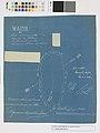Mappa da Possa de Nominada Fazenda da Palmeira Pertencente ao Sns. Francisco Antonio dos Santos (Gulart, Manuel Pereira -Franzoi, Henrique) - 1 (1), Acervo do Museu Paulista da USP.jpg