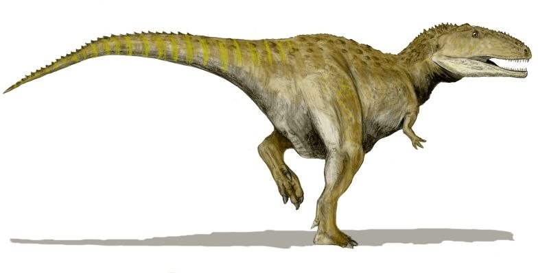Mapusaurus BW