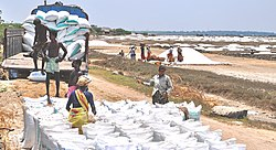 Salt pans in Marakkanam