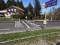 Marquage Elsass - France au Col du Bonhomme en avril 2015.jpg