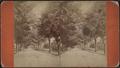 Meadow Avenue, Orange Co., N.Y, by Jones, William, fl. ca. 187-.png