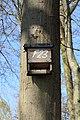 Meppen - Roheide 03 ies.jpg