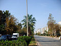 Mersin Yenişehir..jpg